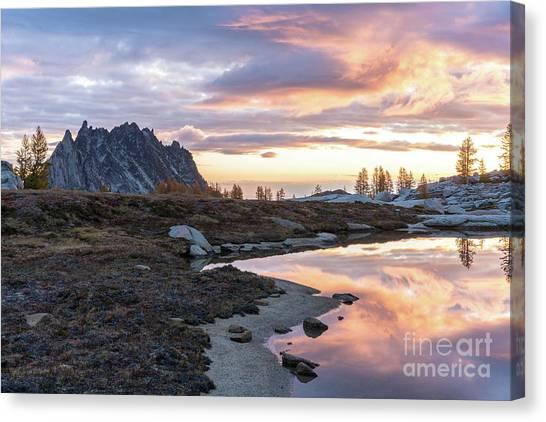 Larch Canvas Print - Prusik Peak Golden Sunrise Light by Mike Reid