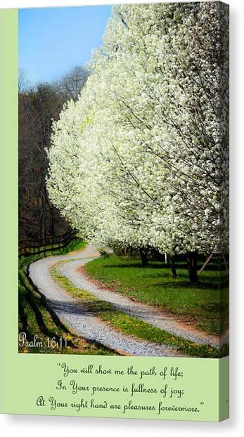 Psalm 16 11 Canvas Print