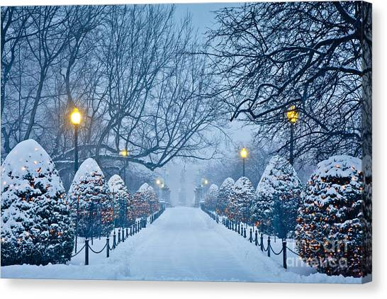 Boston Canvas Print - Public Garden Walk by Susan Cole Kelly