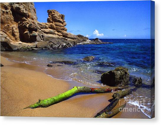 Puerto Rico Toro Point Canvas Print