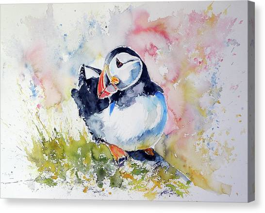 Puffin Canvas Print - Puffin On Stone by Kovacs Anna Brigitta