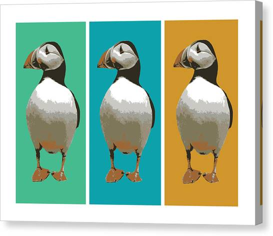 Puffins Canvas Print - Puffin Trio Pop Art by Michael Tompsett