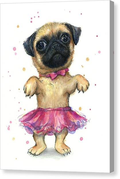Pugs Canvas Print - Pug In A Tutu by Olga Shvartsur