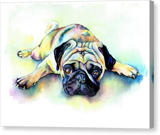 Pugs Canvas Print - Pug Laying Flat by Christy  Freeman