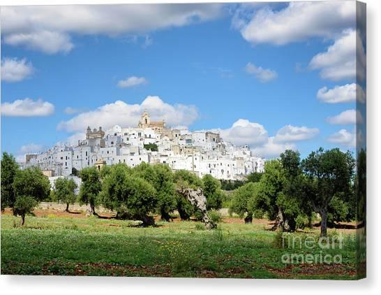 Puglia White City Ostuni With Olive Trees Canvas Print