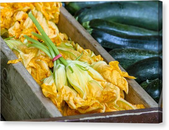 Locally Grown Canvas Print - Pumpkin Blossoms by Teri Virbickis