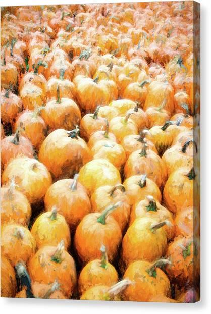 Pumpkin Collection Canvas Print