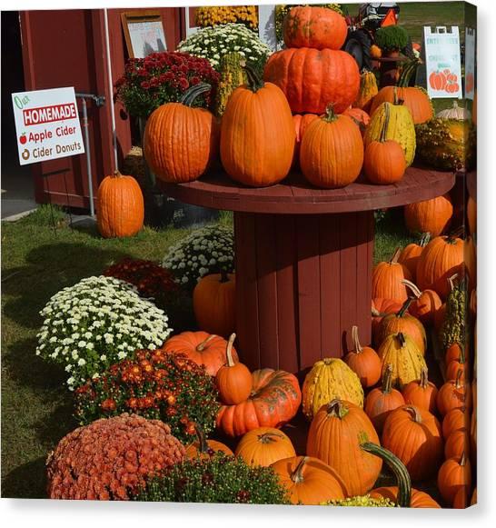 Pumpkin Display Canvas Print