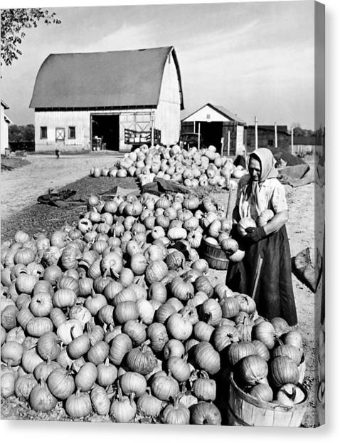 Thanksgiving Canvas Print - Pumpkin Harvest by American School