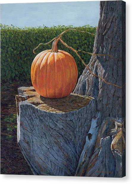 Pumpkin On A Dead Willow Canvas Print