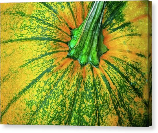 Pumpkin Season Canvas Print by JAMART Photography