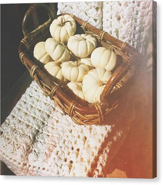 Pumpkins Canvas Print - Pumpkin Season #pumpkins #whitepumpkins by Joan McCool