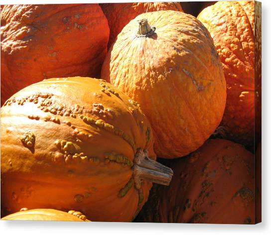 Pumpkin Shadows Canvas Print