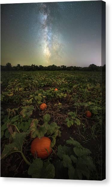 Pumpkin Patch Canvas Print - Pumpkin Space  by Aaron J Groen