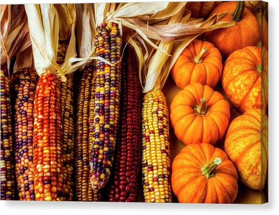 Indian Corn Canvas Print - Pumpkins And Indian Corn by Garry Gay