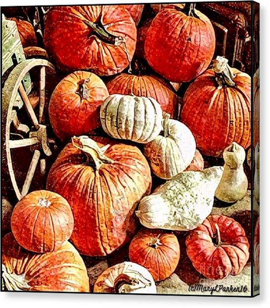 Pumpkins In The Barn Canvas Print