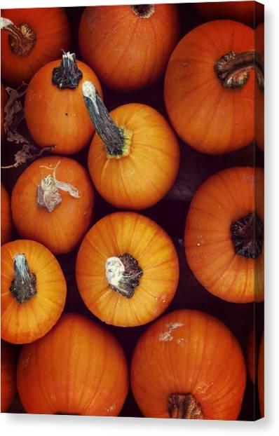 Pumpkins Canvas Print by JAMART Photography