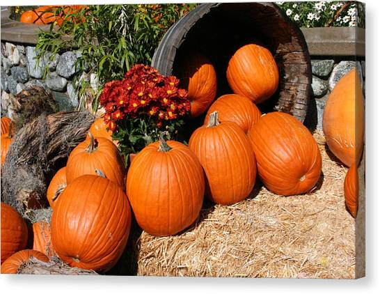 Pumpkins Canvas Print - Pumpkins- Photograph By Linda Woods by Linda Woods