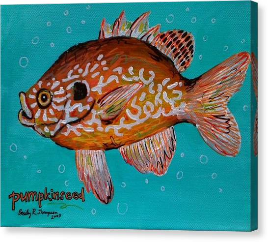 Pumpkinseed Canvas Print by Emily Reynolds Thompson