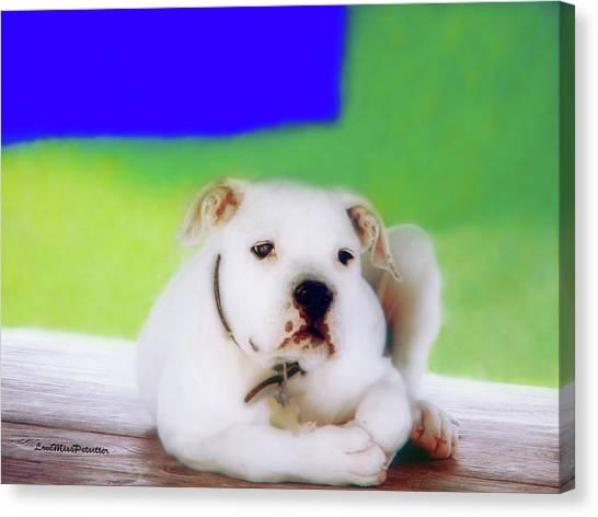 Puppy Art 2 Canvas Print