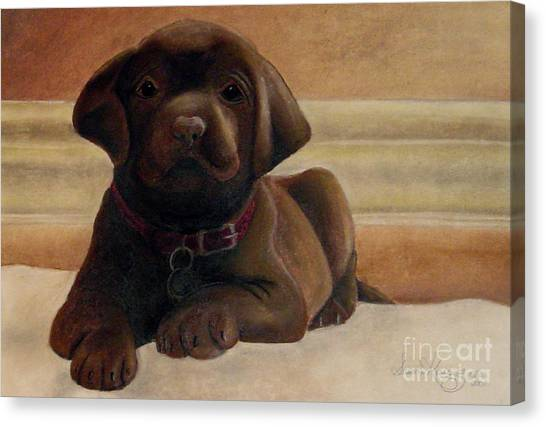 Puppy Love Canvas Print by Susan Clausen
