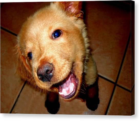 Puppy Smile Canvas Print