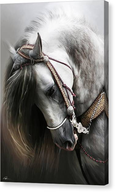 Equine Canvas Print - Pura Spanish Elegance by Paul Miners