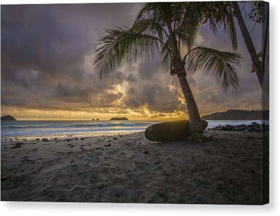 Palm Trees Sunsets Canvas Print - Pura Vida by Jeremy Jensen