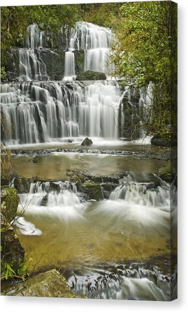 Purakanui Falls Canvas Print by Andrea Cadwallader