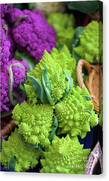 Purple And Romanesco Cauliflower Canvas Print