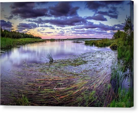 Purple Bay Canvas Print