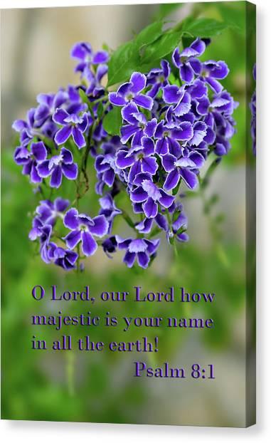Purple Blossoms Ps. 8 V 1 Canvas Print by Linda Phelps