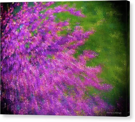 Purple Bush Canvas Print