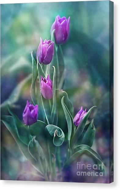 Purple Dignity Canvas Print