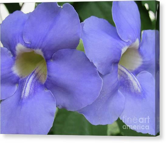 Purple Flower Picture Perfect Canvas Print