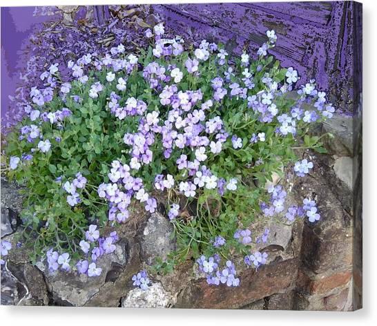 Purple Flower Textured Photo 1028b Canvas Print