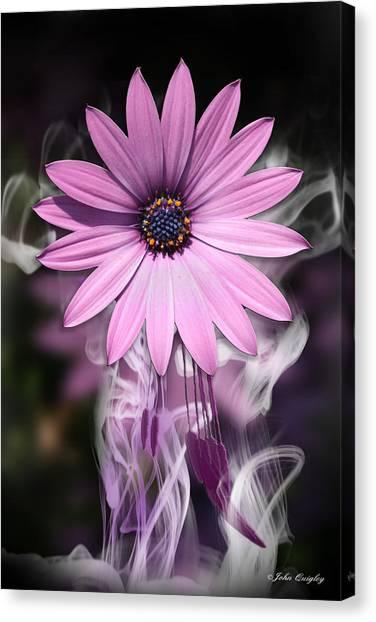 Purple Flower With Smoke Canvas Print