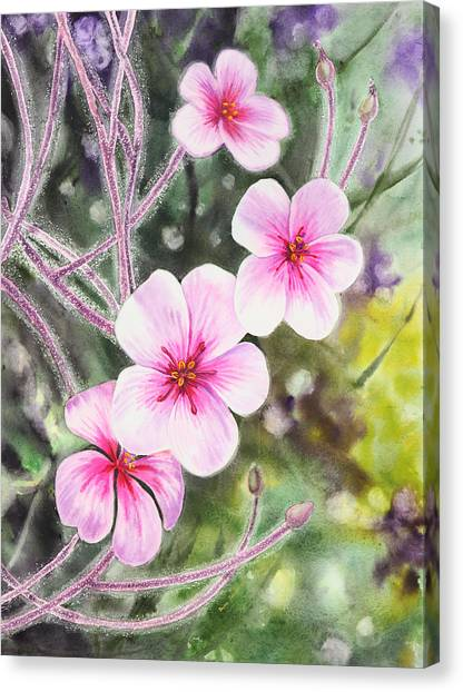 Irina Canvas Print - Purple Flowers In Golden Gate Park San Francisco by Irina Sztukowski