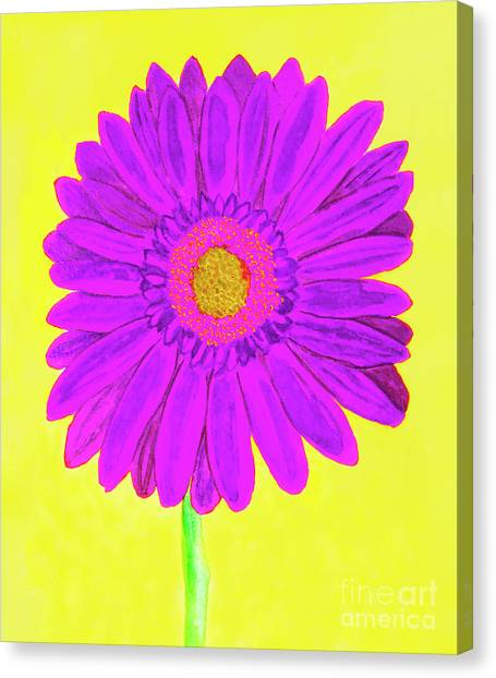 Purple  Gerbera On Yellow, Watercolor Canvas Print