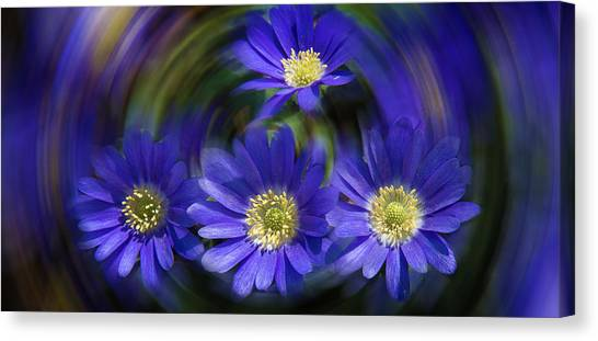 Purple In Nature Canvas Print