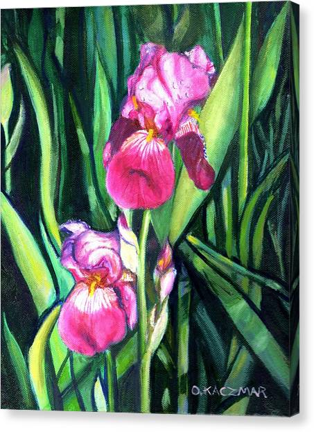 Purple Iris Canvas Print by Olga Kaczmar