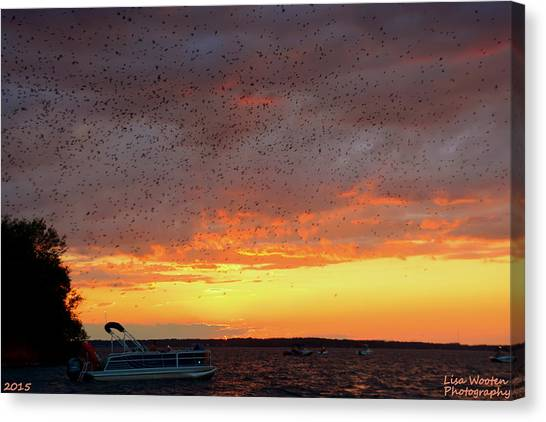 Purple Martin Sunset On Lake Murray Sc Canvas Print