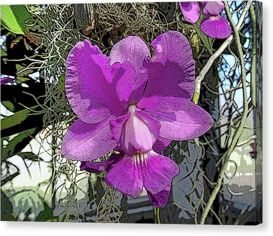 Purple Orchid Canvas Print by Adina Campbell