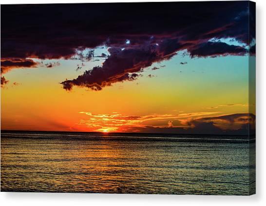 Purple Paints The Orange Canvas Print