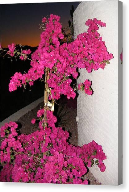 Purple Passion Against Desert Sunset Canvas Print