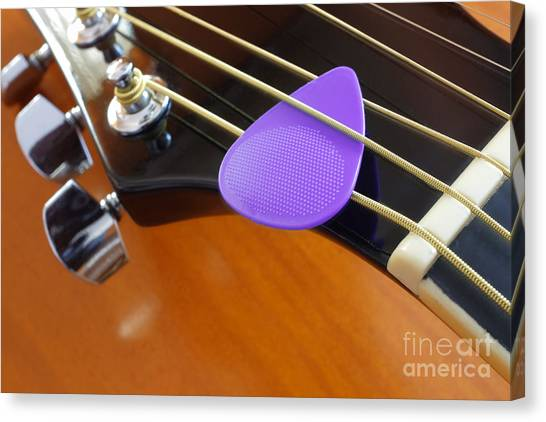 Guitar Picks Canvas Print - Purple Pick by Carlos Caetano