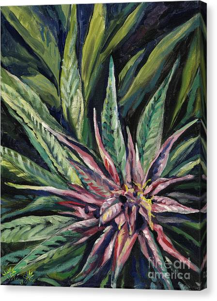Marijuana Canvas Print - Purple Power by Mary Jane