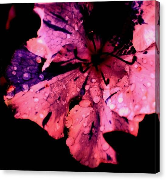 Purple Rain Canvas Print by Trudi Southerland