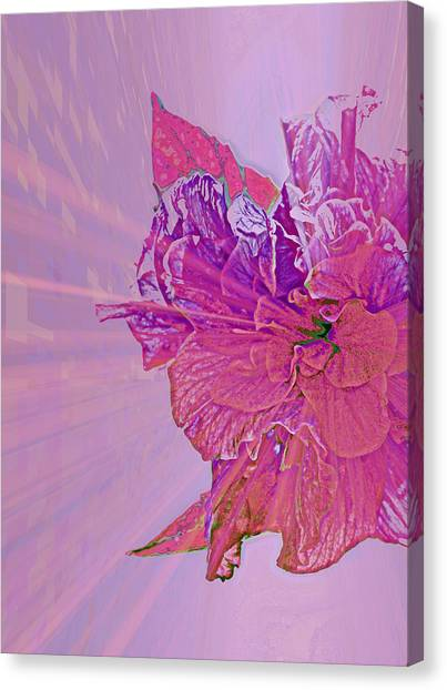 Purple Rays Of Happiness Canvas Print