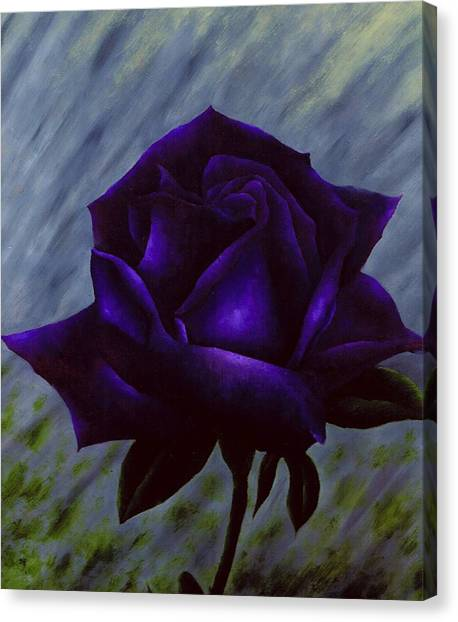 Purple Rose Canvas Print by Brandon Sharp